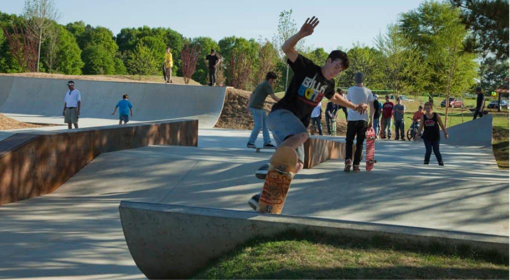 Skater on a ramp at Lion's Park