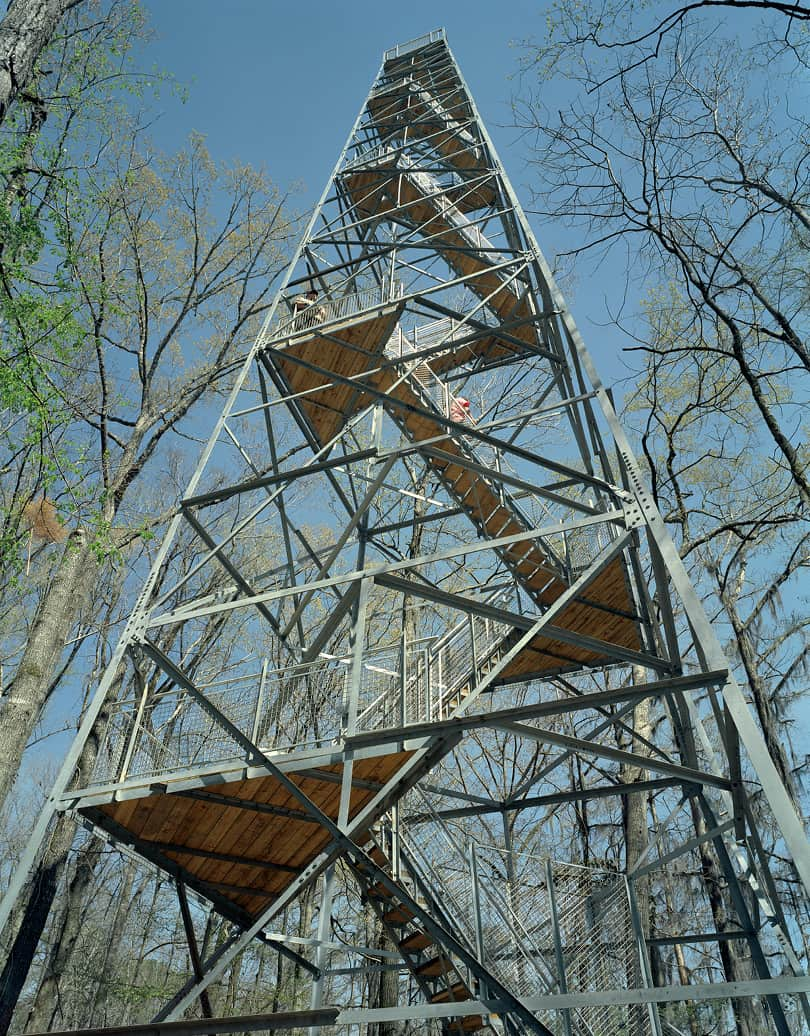 View of the Birding Tower from the ground looking up