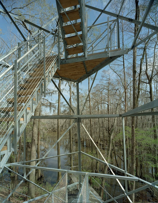 View of the Birding Tower stairs
