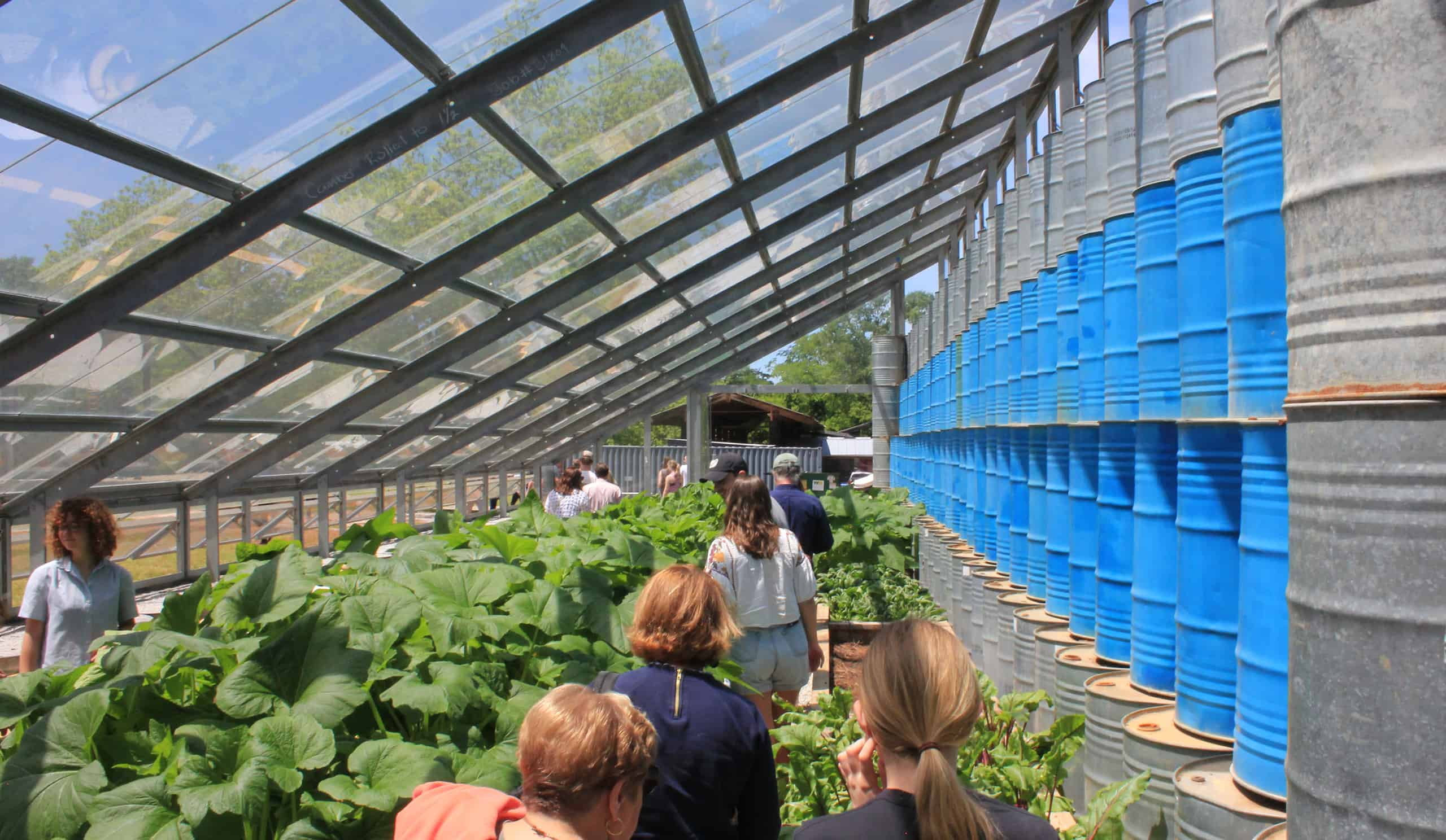a group of people touring the greenhouse during pig roast