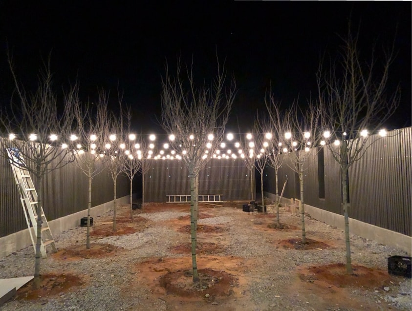 courtyard with string lights at night