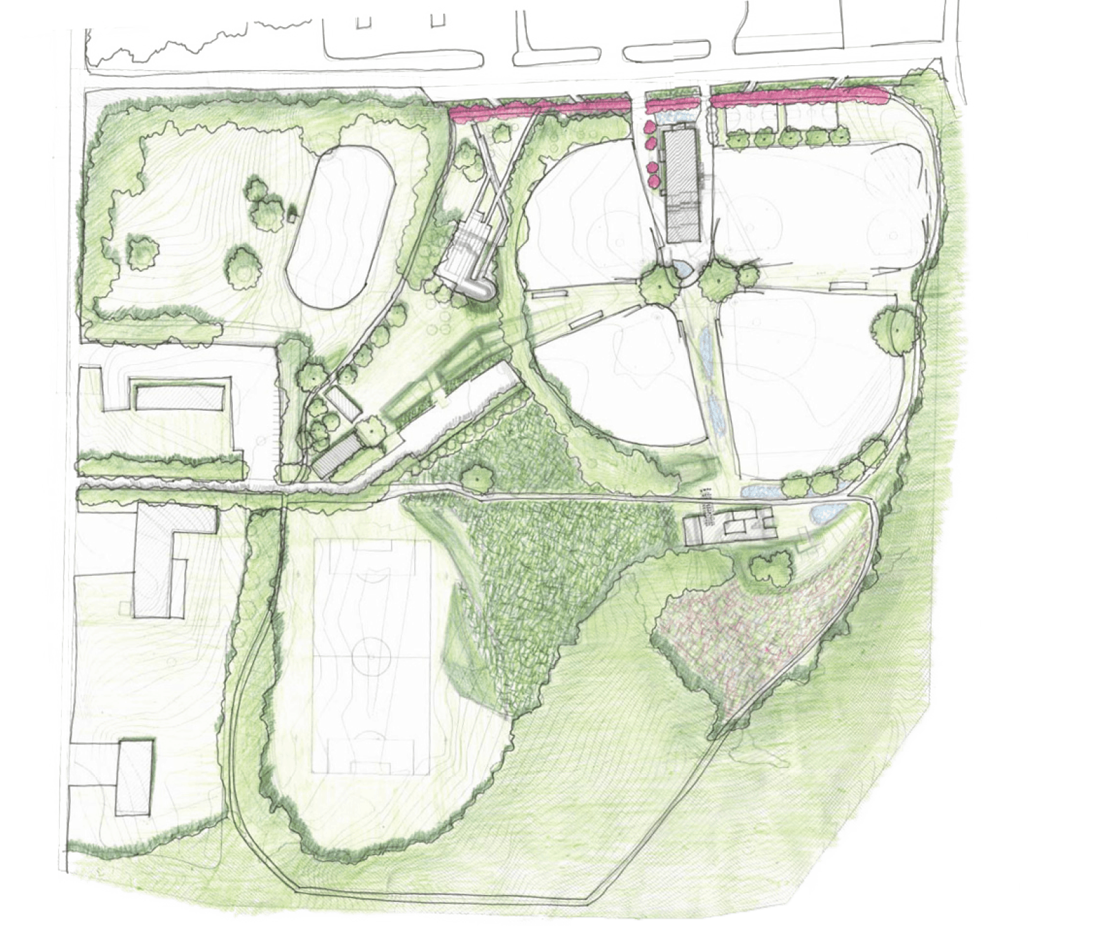 map of lions park showing where new plants will be placed