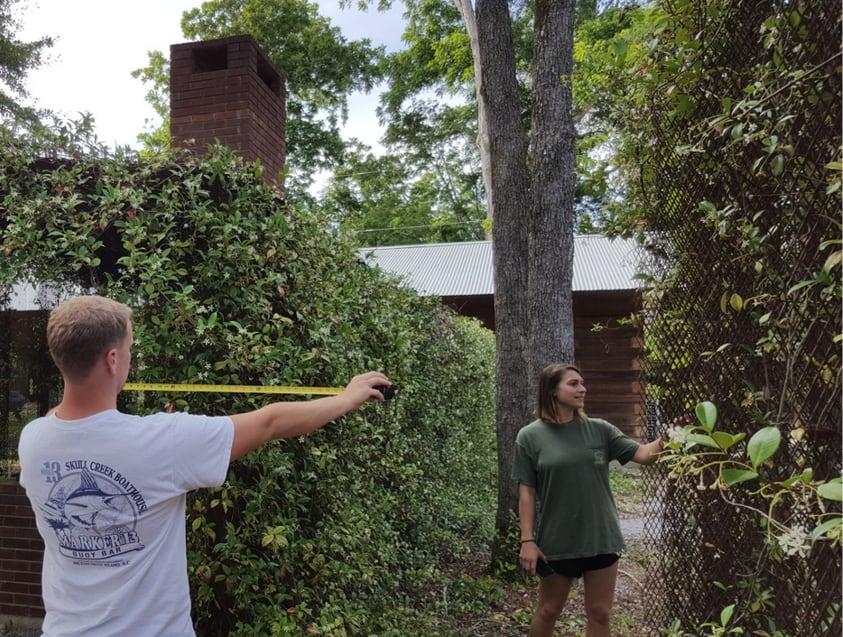 students measuring vines
