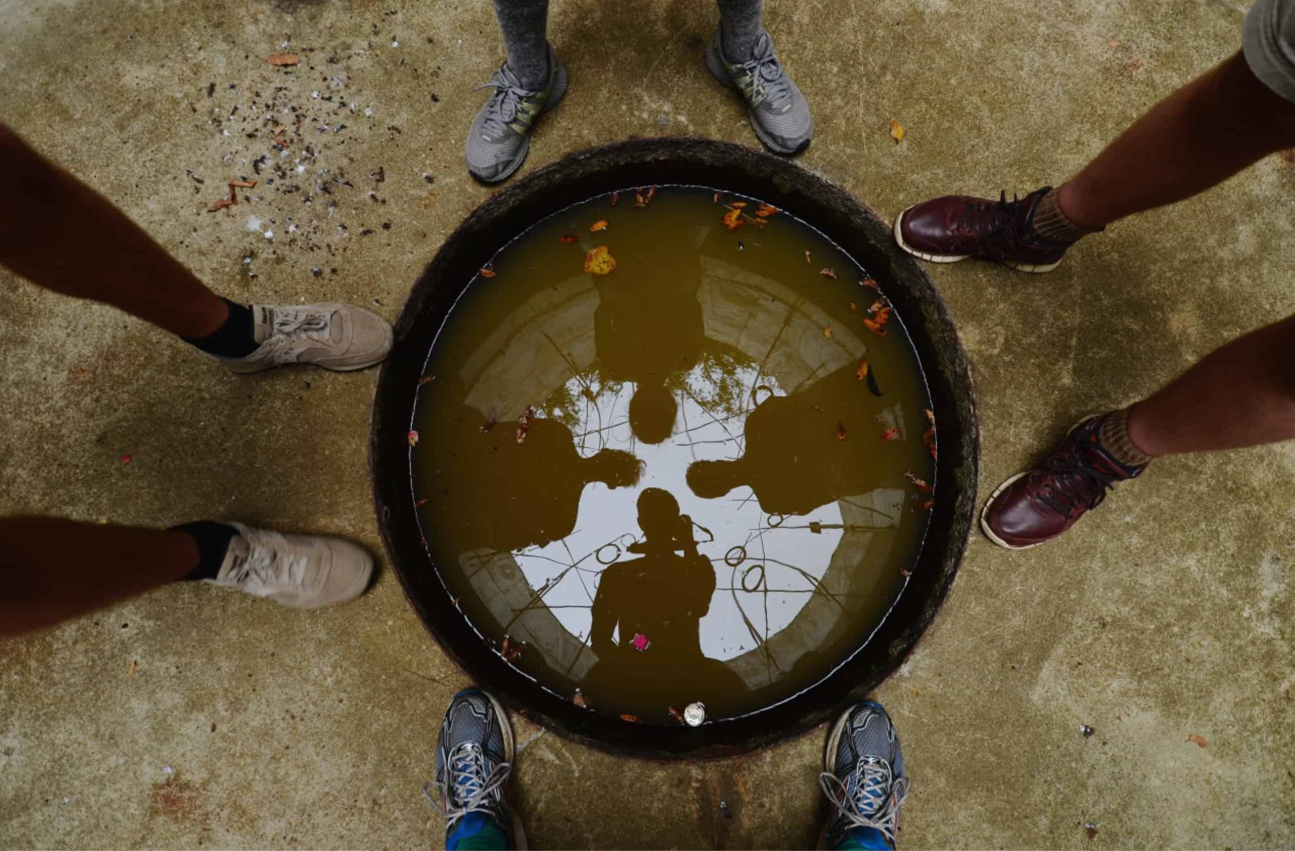 4 students looking down into the pond, shot overhead so their silhouettes in the water and feet on the edge are visible