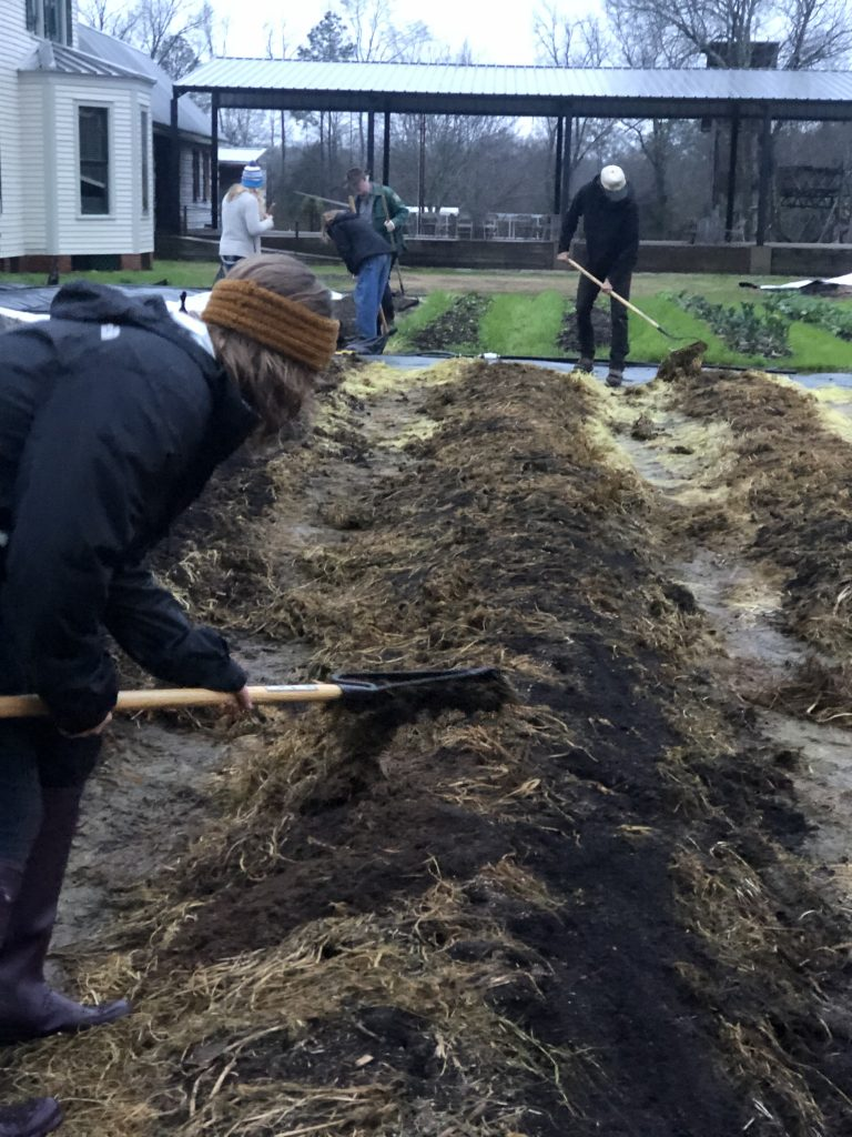 Students prepare a bed to be transplanted into