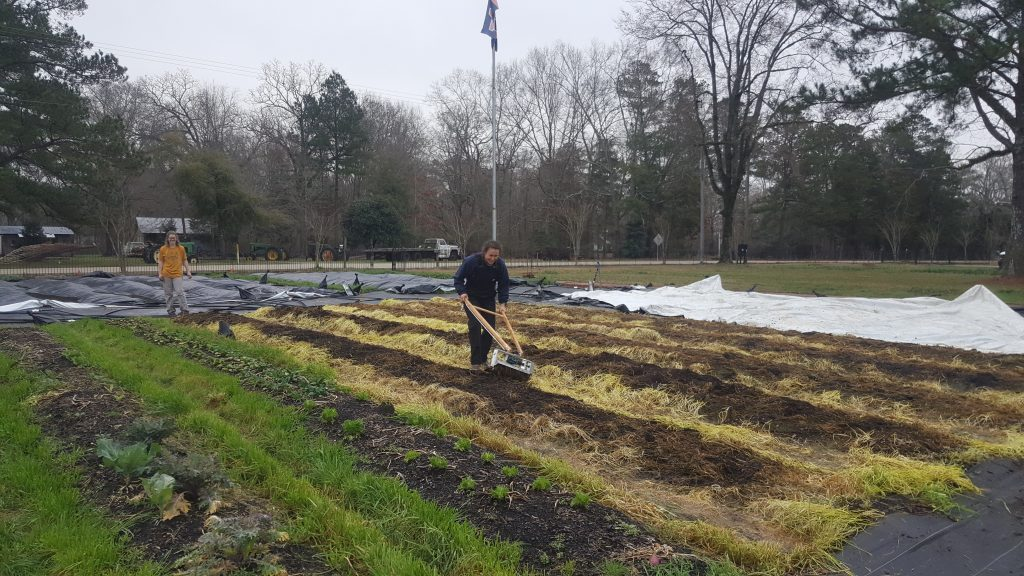 A student uses a tilther to prepare a bed for planting