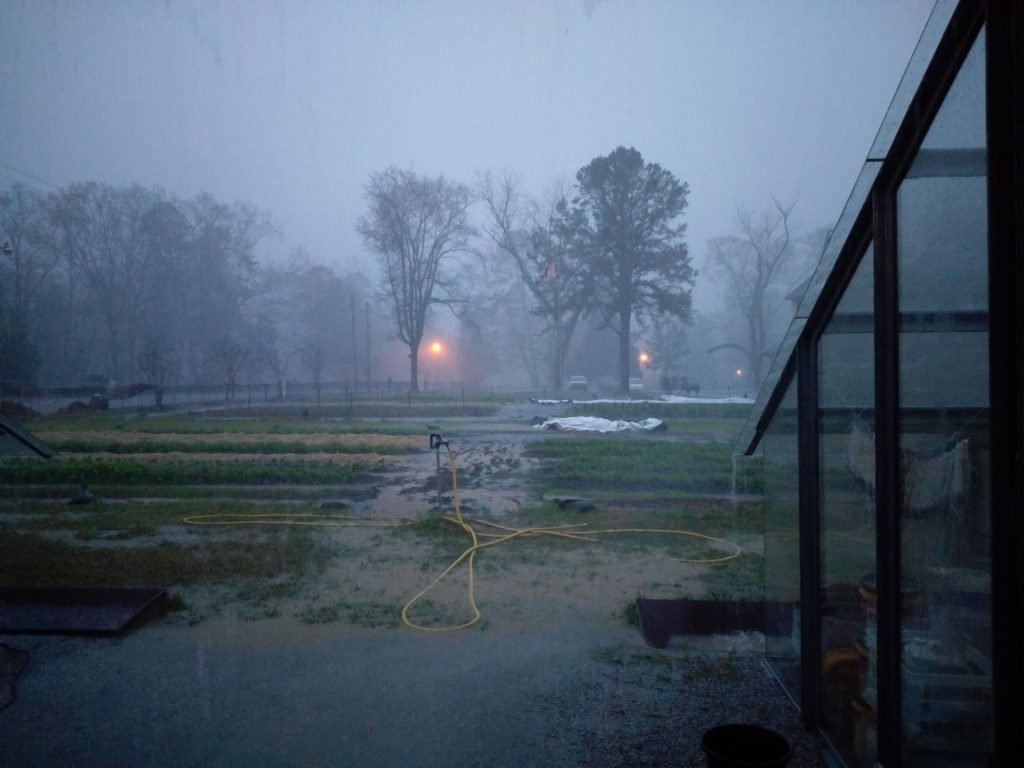 A thunderstorm drenches the farm