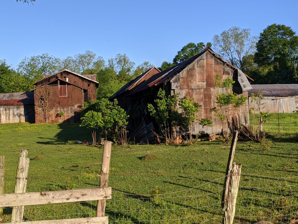 A wide shot of several old farm buildings in a field in Newbern