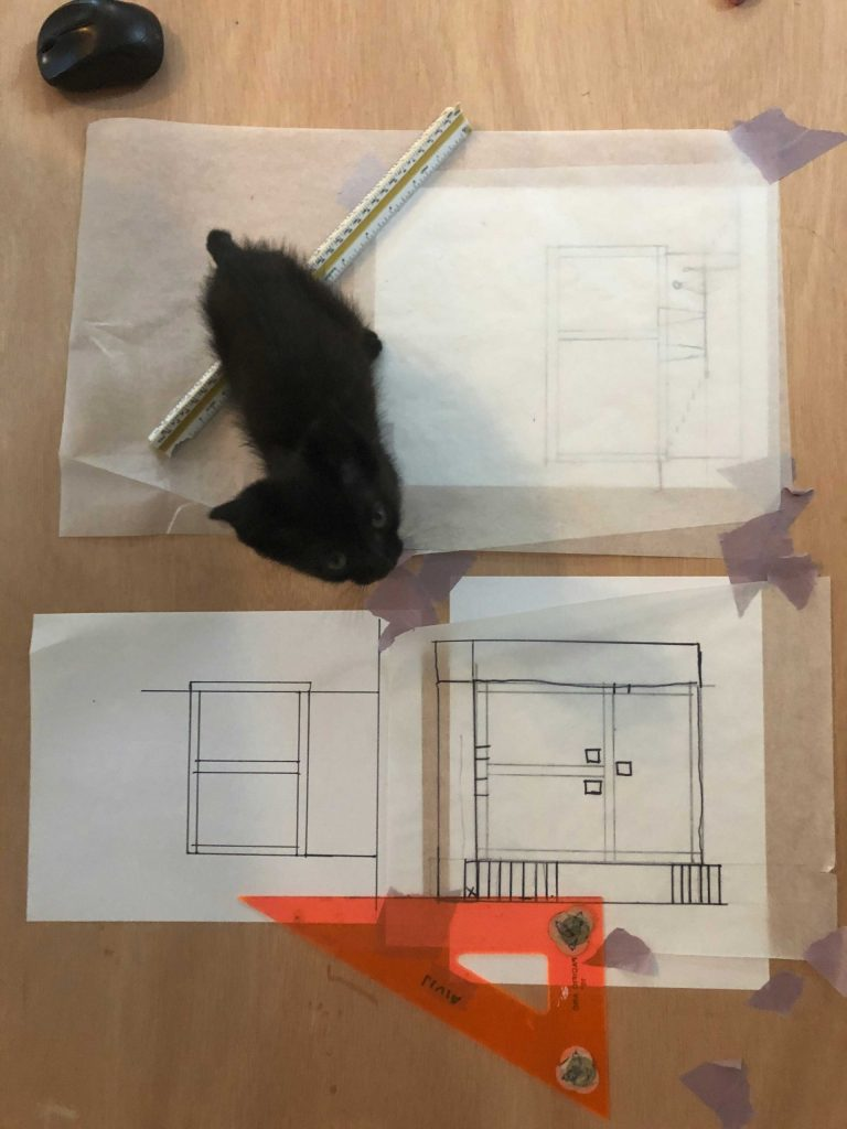 Black cat doing plan drawings of inhabitable structure experiment.