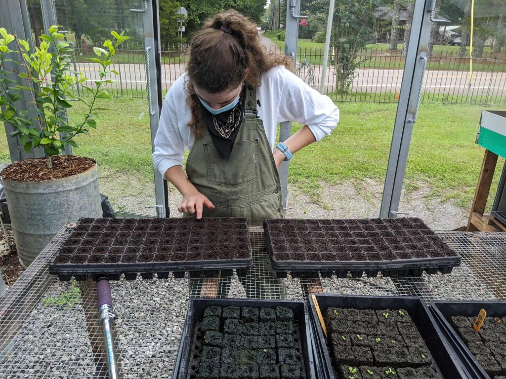 A student makes planting holes in some trays to make them ready for seed starting