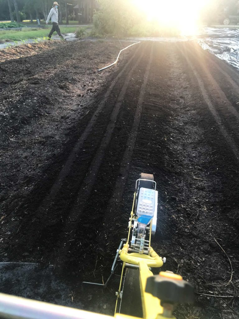 A push-seeder is shown ready to make another pass over a bed with several planting furrows in it
