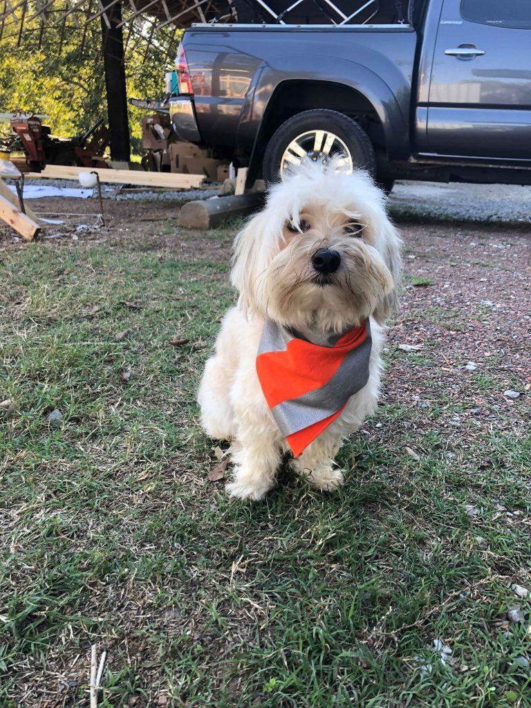 copper wearing safety bandana