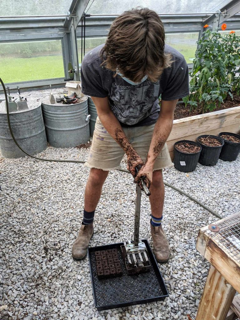 A student uses a soil blocker to make batches of 20 1.5-inch soil blocks