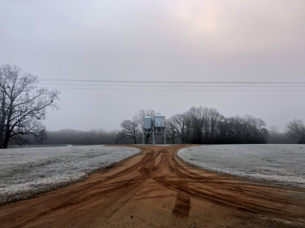 a dirt roads lead to to silos both surround by frosted grass